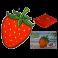 Plážový uterák - Jahoda