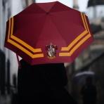 Harry Potter - Chrabromilský dáždnik