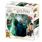 Harry Potter - 3D puzzle - Lord Voldemort - 300